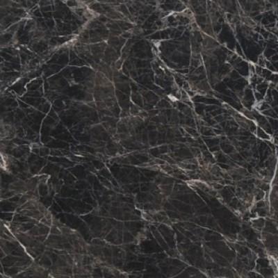 Spider Dark Marble